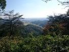 唐沢山城から東京を見る…