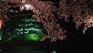 夜桜と三重櫓