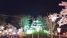 三重櫓と夜桜見物の観光客…