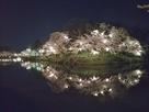 水堀に映る土塁と夜桜 2…