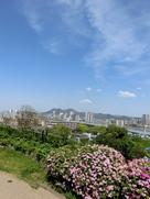 名島城から立花山城を臨む…