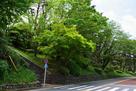 関戸城跡 (聖蹟桜ヶ丘 いろは坂)…