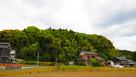 大谷城遠景