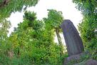 林に囲まれた城址碑…