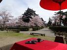 お城と桜と抹茶と桜餅…