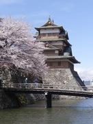 桜、堀、天守
