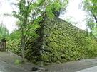 苔に覆われた石垣…