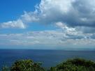 富山湾を望む(伝本丸跡より)…