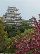 満開の八重桜と共に…