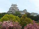 白鷺城と満開桜…