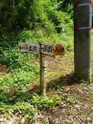 山側の標識