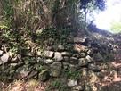 三の丸直下の石垣…