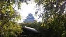 福岡城夏祭り