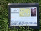 吉川元春館跡の正面石垣…