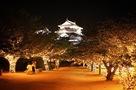 松山城 ライトアップ…