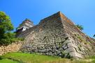 丸亀城 吉井勇の歌碑付近の石垣…