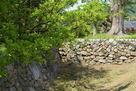 堀切と石垣