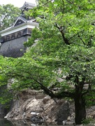 飯田丸五階櫓下の石垣(備前堀前から)…