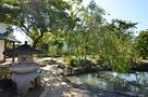 旧樋口家住宅(裏手の池)…