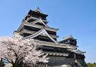 桜咲く熊本城