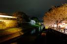 夜の熊本城の堀端…