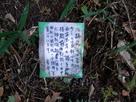 勝手神社さんからのメッセージ…
