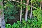 蛭子神社(東側)土塁と空堀…