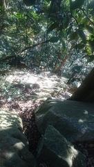 天守曲輪東側の岩壁…