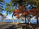 本丸跡から見た近江大橋…