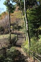 東郭から見た土橋…