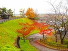 櫓台跡・空堀跡◆名神道多賀SA…