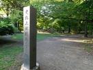 上田城本丸跡の碑(初夏)…