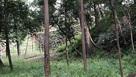 御台所屋敷跡の石垣…