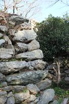 天守横の石垣