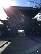 大樹寺山門から岡崎城を望む…