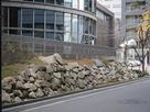 ドーンセンターの豊臣期の石垣…