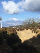 元日の畝堀と富士山…