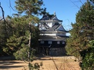鉄櫓 (辰巳櫓跡から)…