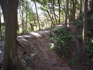 三ケ月掘端部からの土橋…