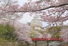 大天守と城見橋(春)…