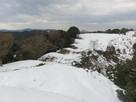 雪のいものがんき…