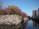 徳島城の石垣とお掘…