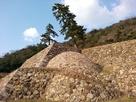 鳥取城天球丸の巻石垣…