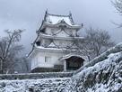 雪景色の天守