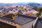 「ニの櫓」屋根と、「西の丸」「菱の門」方…