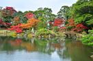 玄宮園の蓬莱島と紅葉 2012…