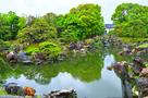 春雨の「二の丸庭園」⑨…