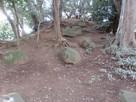 遺構らしき土盛り?に大きな石がゴロゴロ…