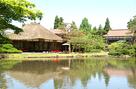 御薬園の池面