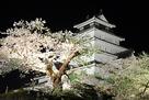 夜桜と会津若松城…